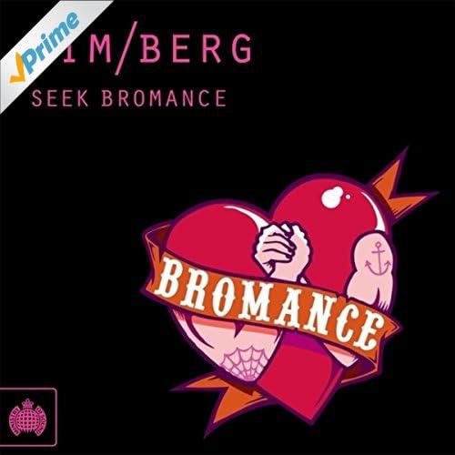 Seek Bromance (Avicii's Vocal Extended)