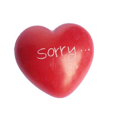240861 Love Hearts - Liebessteine - 8 verschiedene Liebessprüche auf Herz Specksteinen, 1 Stück (Sorry...)