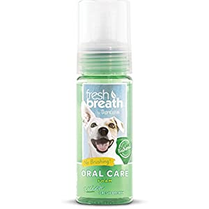 (Tropiclean) Fresh Breath Instant Fresh Foam 133ml