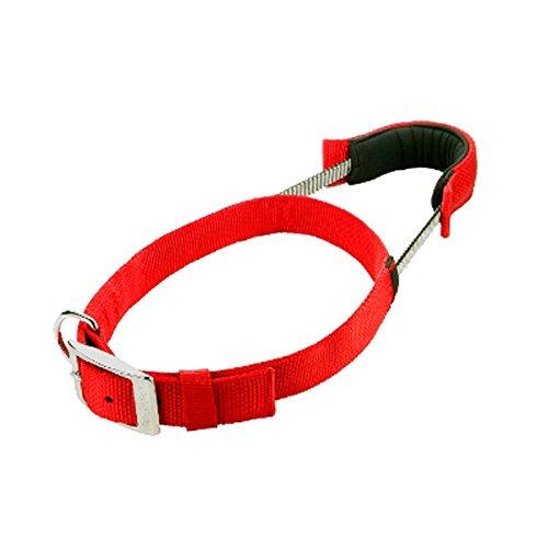 Asab Pet Dog Puppy Halsband Sicherheit Walkies Training Leine Reflektierende Nähte Elastic Gepolsterter Tragegriff wasserdicht Nylon Walkie Leine