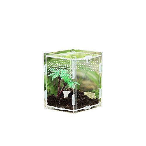 cosyhouse Klare Reptilienzuchtbox Kleines Acryl-Terrarium Vollansicht Fütterungsbox für Insekten-Reptilien Vogelspinnen Amphibien Raupen Cricket Spider Snail Reptile Kind
