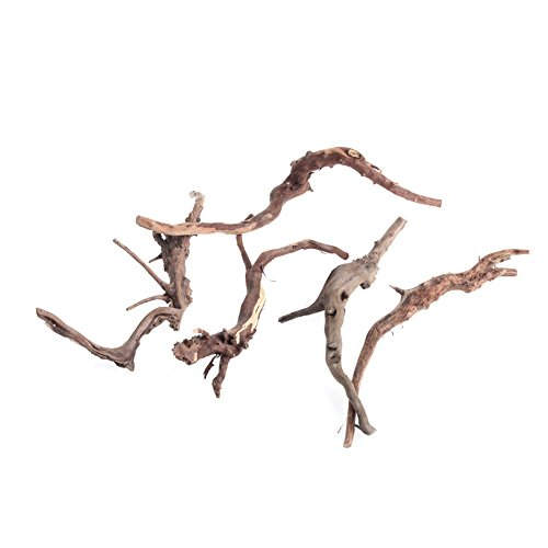 Dairyshop, Aquariumdekoration aus Naturholz, Treibholz, für Fischgläser, Ornament, Dekoration, holz, S