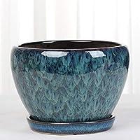Minmin Macetas de macetas de cerámica de Nido de diseño Floral/Recipientes de Plantas con