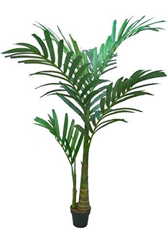 Dekoflower - Bangalowpalme ca. 180 cm