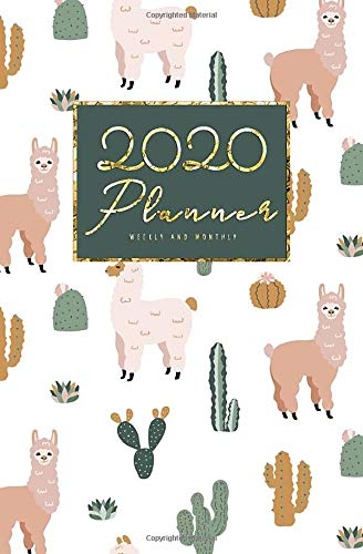 """2020 Weekly And Monthly Planner: Calendar Schedule, Squares Quad Ruled Notes, Dot Notes, No Holiday Cactus (January 2020 through December 2020) Pocket Size 5.25"""" x 8"""""""
