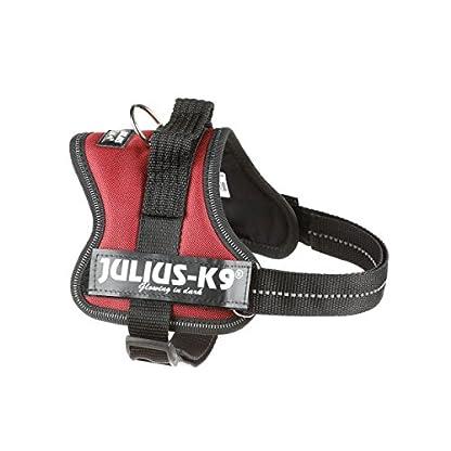 Trixie Julius/K9 Power Dog Harness, 4