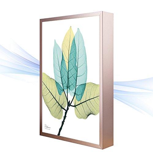 BESPD Zeitgenössische Kunst Slim-Sul amerikanischen Wandbild Wand Lampe leuchtet Korridor Gang Wohnzimmer Schlafzimmer Bett Lampen C, klein 20 * 30 cm. - Chrome Zeitgenössische-bett