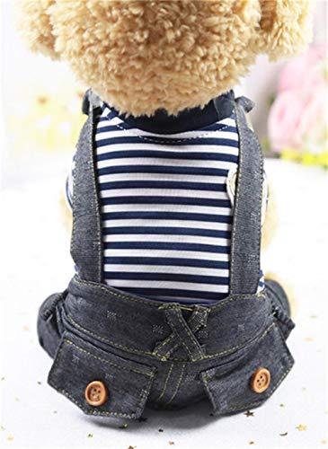 Vier Jahreszeiten Kostüm Frühling - GOUSHENG-Costumes Haustiere Kleidung Kleider Mode Hund