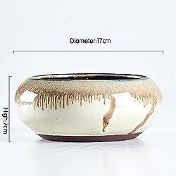 Nclon Fleischig Floral Chinesischer Stil Persönlichkeit Kreativ Keramikbeschichtung Blumentopf,Garten Moderne Blume Pflanzer Pot -einzigartige Chinesisch Kultur Stil