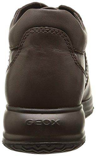 Geox D Happy C, Scarpe Low-Top Donna Beige (Dove Grey)