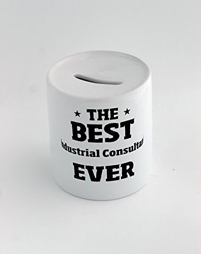 money-box-with-the-best-industrial-consultant-ever