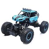 TDW RC Auto 2,4GHz Ferngesteuerter Auto Geländewagen 2WD, High Speed Rennwagen für Kinder und Erwachsene