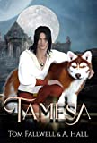 Book cover image for Tamesa: Diverse Epic Fantasy