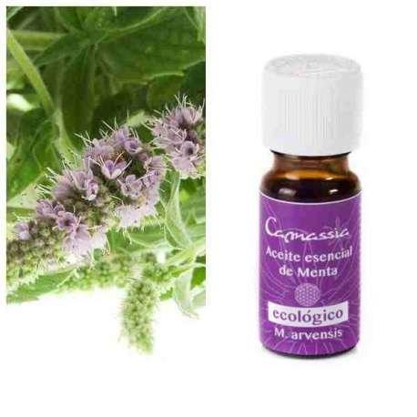 aceite-esencial-menta-arvensis-bio
