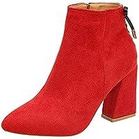 Zapatos Mujer Invierno K-Youth Botas Cortas con Cremallera Moda Martin Botines Mujer Invierno Tacón Ancho Botas Mujer Invierno Altas Tacon Botas para Mujer Otoño