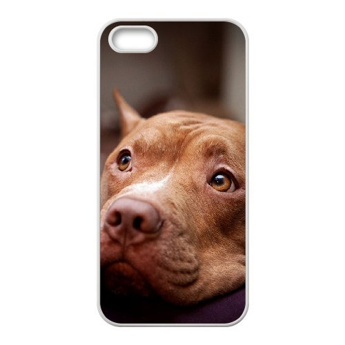 LP-LG Phone Case Of Pit Bull Terrier For iPhone 5,5S [Pattern-6] Pattern-6