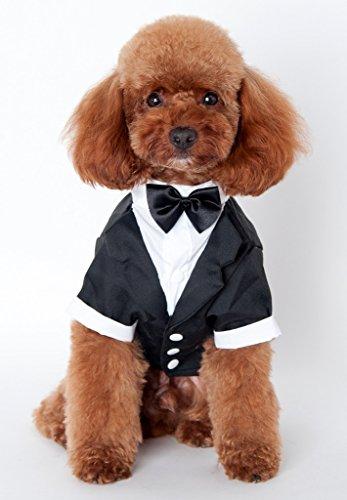 und Smoking Puppy Hund Hochzeits-Kleider Kostüm #5 --Brust:59cm; Hals:41cm; Rückenlänge:38cm ()