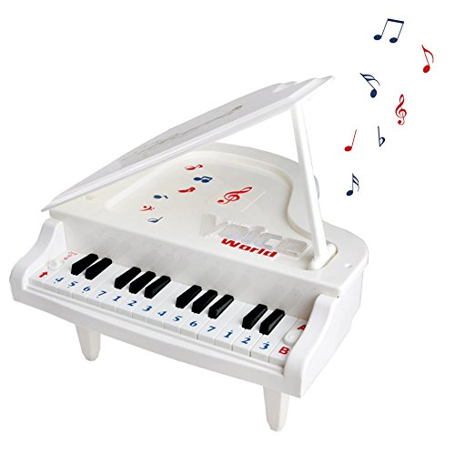Fajiabao Piano Toys Electronic Keyboard Musical Toy Set with Light and Song Educational Toys for Kids Girls Boys Children