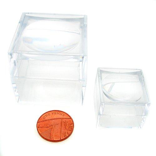 Welded Bliss Magni Box Acryl-Boxen Zwei größere (40 mm) & Zwei kleinere (25 mm). Acryl-Lupenbox für Schmuck und Schmuckteile, Käfer und Insekten, Fossilien, Mineralien und Edelsteine 4Stück -