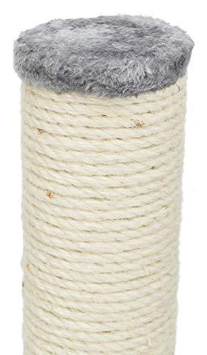 Trixie Arbre à Chat Parla, 62 cm, Gris Platinium