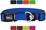 DDOXX Hundehalsband Air Mesh in vielen Farben & Größen für kleine & große Hunde | Halsband Hund Katze Welpe | Katzenhalsband klein | Hunde-Halsbänder breit Leuchtend | Blau, XS