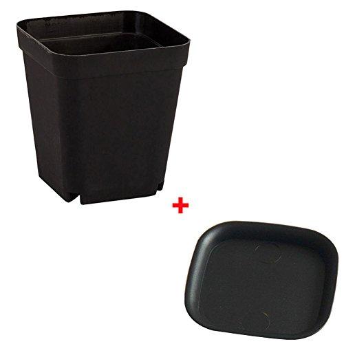 GEZICHTA Juego de 10 macetas con ventosas de plástico cuadrado para decoración del hogar y la oficina, multicolor, negro