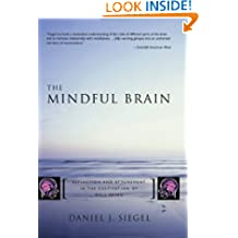The Mindful Brain: Reflection and Attunement in the Cultivation of Well-Being (Norton Series on Interpersonal Neurobiology Book 0)