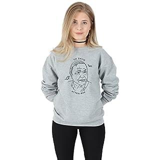 Sanfran - Sir David Atten-bae Top Tumblr 90's Retro Vintage Attenborough Bae Jumper Sweater - Medium/Light Grey
