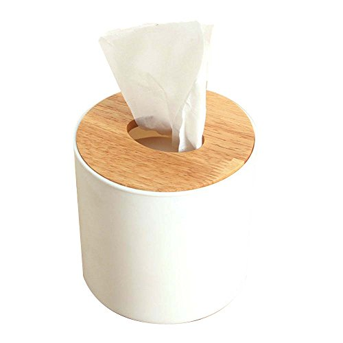 Holz Facial Tissue Papier Box Cover Spender Fashion Kitchen Serviette Fall Halter Container für Badezimmer Home Office Hotel Auto Automotive Restaurants B (Metall-lippenstift-rack)