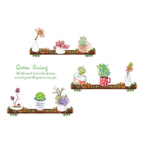 Uokoki Wall suculenta Cactus Flor Etiqueta Planta