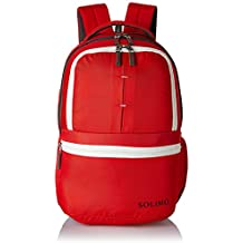 Amazon Brand - Solimo 25 Ltrs Casual Backpack