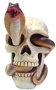 KATERINA PRESTIGE Crane Serpiente, BROHF1561, Multi