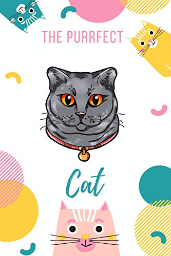 The Purrfect Cat: Chartreux -