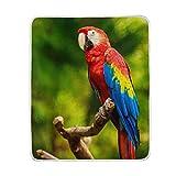 vinlin Dschungel-Ara, Papageien-Überwurf, kuschelig, warm, leicht, für Wohnzimmer, Outdoor, Reisen, 127 x 152 cm