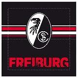 SC Freiburg Sitzklappkissen Skyline