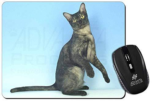 Pretty Asian Smoke Katze Computer-Maus -Matte / pad Weihnachtsgeschenk