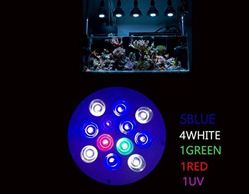 Lampe Full Spectrum Aquarium (DLPJ 36W LED Aquarium Lampe UV enthalten Reef Licht LED FULL Spectrum LICHT FÜR NANO Tank, frisches Wasser, Marine Aquarium Tank,-Algen Algen Korallenwachstum (R: B: G: W: UV = 1: 5: 1: 4: 1)