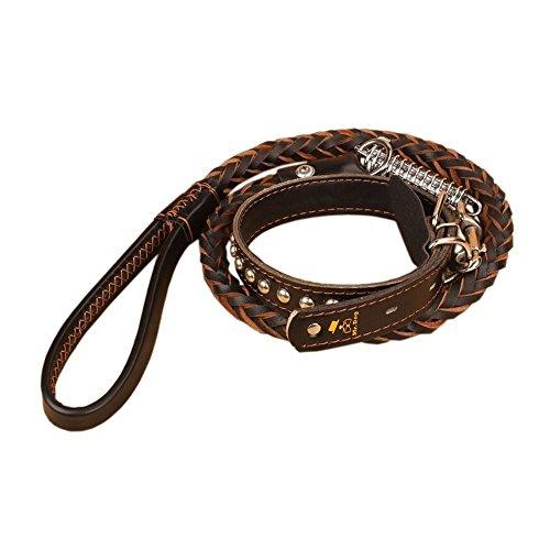 OUTOWIN Leder Hunde-Führleine Hundeleine Hundehalsband Lederhalsband für Golden Retriever, Labrador Retriever, Samoye, Siberian Husky...