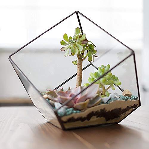MyGift moderno artística planta de cristal cubo de cristal transparente caja terrario/decorativo vela, soporte para luz de té