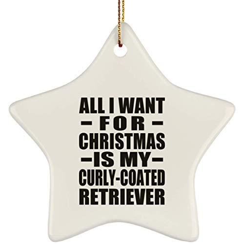 Designsify All I Want for Christmas is My Curly-Coated Retriever - Star Ornament Stern Weihnachtsbaumschmuck aus Keramik Weihnachten - Geschenk zum Geburtstag Jahrestag -