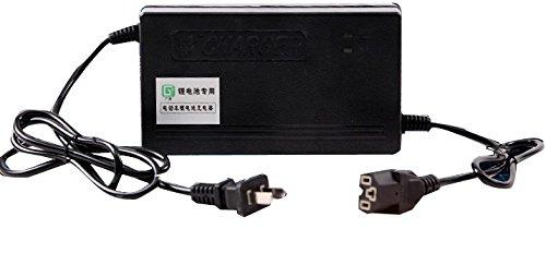 Chargeur compatible 5A pour 48V LiFePO4 batterie dans l'application de la moto électriqu
