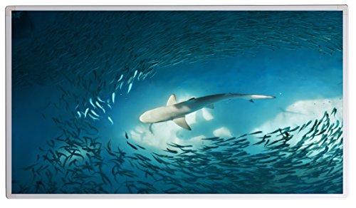 Könighaus Bildheizung (Infrarotheizung mit hochauflösendem Motiv) 5 Jahre Garantie (600-shark)