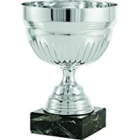 Art-Trophies AT82323 Trofeo Deportivo, Plateado, 19