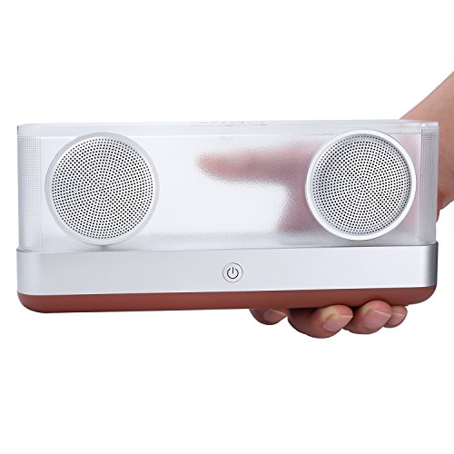 BassPal i30 Altavoz Bluetooth Transparente 4.2 con 8 horas de Reproducción, Salida 20W Altavoz portátil inalámbrico con sonido estéreo HD y Bajo Superior, Altavoces coloridos LED para teléfonos, Tabletas, PC, Coche (marrón)