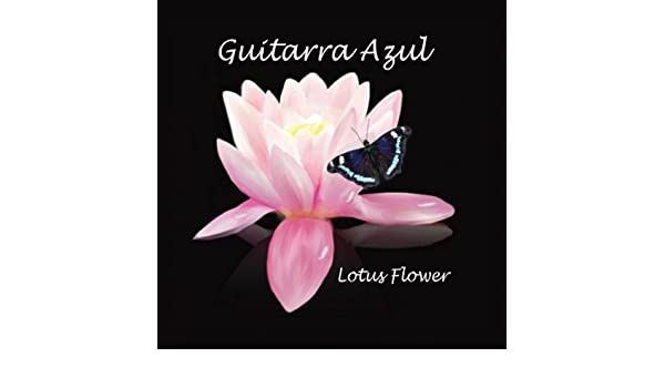 Buy Lotus Flower Online At Low Prices In India Amazon Music Store
