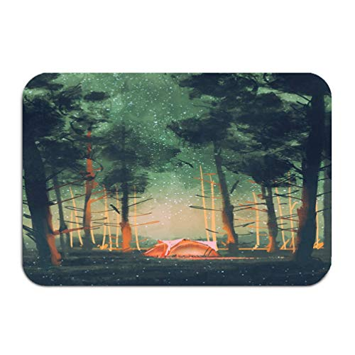 NDJHEH Outside Shoe Non-Slip Color Dot Doormat Camping Forest Night Stars Fireflies digital Painting Colored Mats Entrance Rugs Carpet 16 * 24 inch