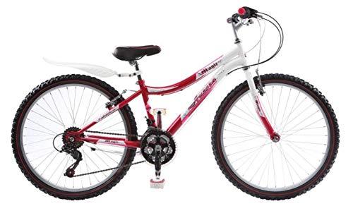 24in Bereich (24 Zoll Jugend Fahrrad Rad Bike Mountainbike Kinderfahrrad Mädchenfahrrad 18 Gang ANGEL)