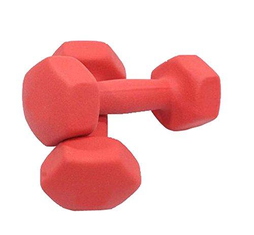 Dull polierte rote Anti-Rutsch-Griff Hanteln Yoga-Übung Items Set von 2