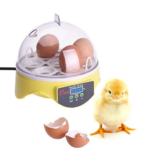 Sotoboo Mini Eco Uovo Incubatrice, 7Uova Mini Digital Egg Incubator Poultry Hatcher per Pollo Duck Goose pollame Hatcher con Porta Uova