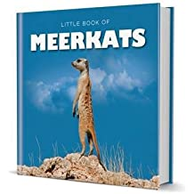 [(Little Book of Meerkats)] [By (author) Michelle Brachet] published on (November, 2012)